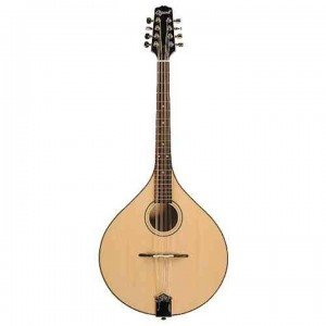 Bill bailey Mandola STE2242 copy