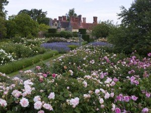 Borde Hill Rose Gdn and House D St R-615bord_040md