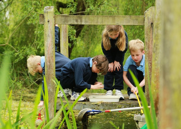 pond-dipping-img_1503-2